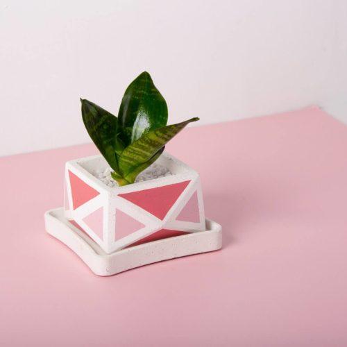 Crystal Planter 2 PinkWhite