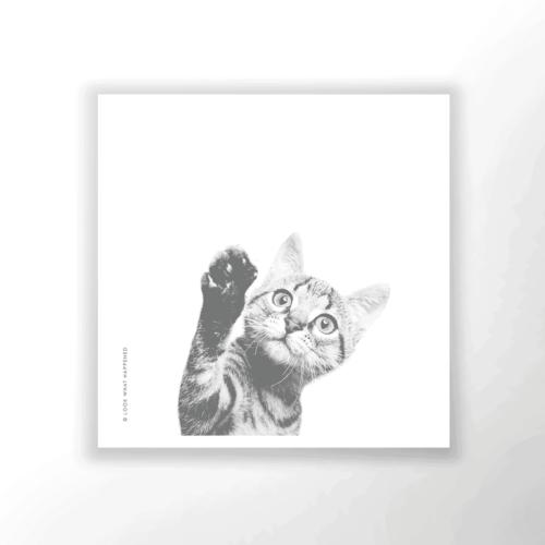 WAP CAT 02 1